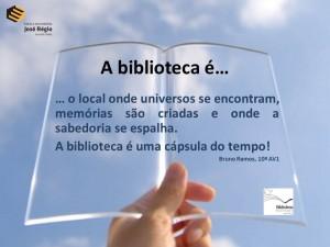 BIB 10AV1